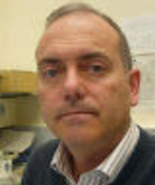 avatar Enric